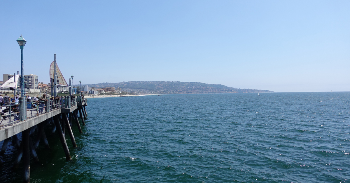 休日は海どりと